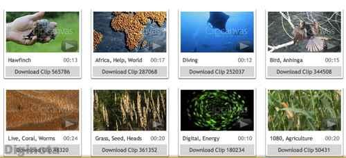 Sitios con vídeos de introducción y efectos gratuitos 14