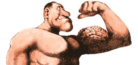 Hallan clave para regenerar músculos 1