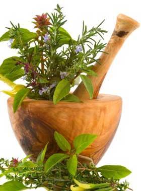 Photo of Hierbas de la A a la Z …y sus funciones curativas,Remedios Caseros con hierbas naturales en orden alfabético