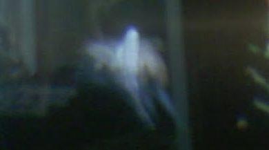 Photo of Quien dijo que en el mas alla no se goza, Fotografían a fantasmas pleno acto