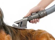 Aspiradora de pelos de perro