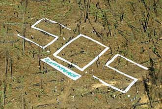 La región con mayor deforestación del mundo es según la ONU (FAO) AMÉRICA LATINA 1