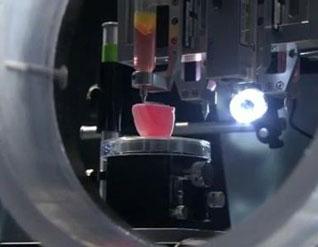 La ciencia nadie la detiene crean impresora 3D de tejidos y órganos, tecnología de 'bioprinting' (bioimprenta) 13