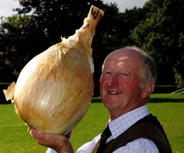 La Cebolla más grande del mundo 0