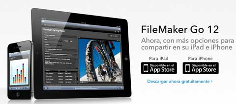 file maker go