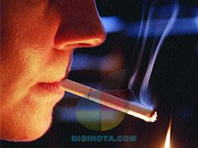 Fumar puede acortar tu pene casi un centímetro y mas datos que impactarán a muchos hombres 1
