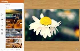 Photo of Muy completo editor de imágenes o fotos online y gratis: PicMonkey