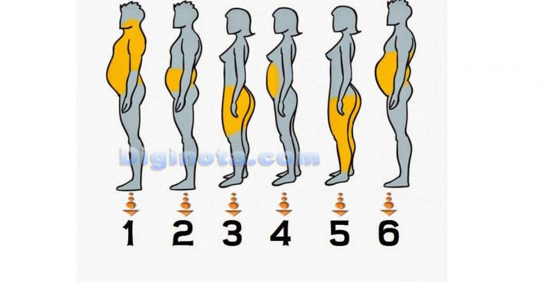 Photo of Que dieta y/o ejercicios seguir según tu grasa