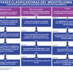 fases del mesothelioma