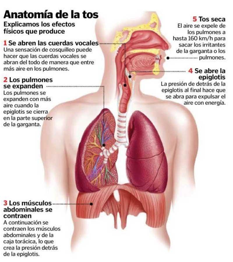 Qué es la tos seca ?