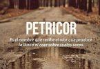 Petricor-el-olor-de-la-lluvia