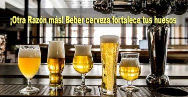 beber-cerveza-salud