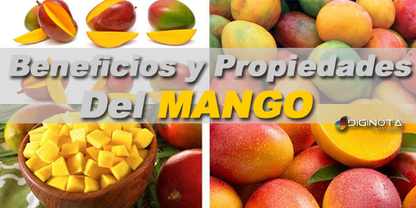 Photo of Beneficios y Propiedades del Mango