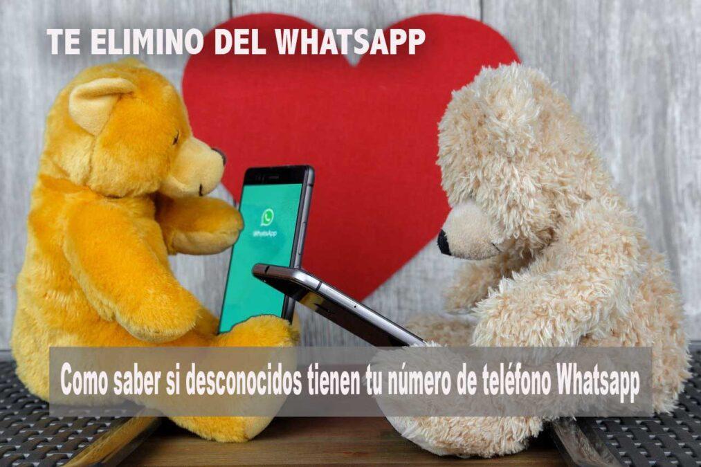 Como saber si desconocidos tienen tu número de teléfono Whatsapp