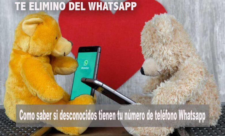te elimino del WhatsApp
