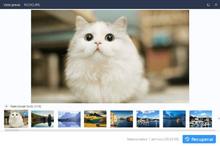EaseUS Data Recovery Wizard es un programa gratuito enfocado en la recuperación de archivos